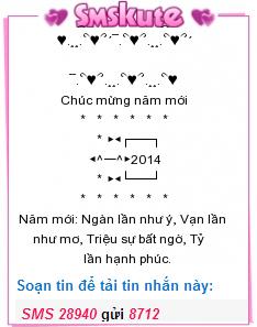 Dia diem ban phao hoa mung tet Duong lich 2014 tai TPHCM